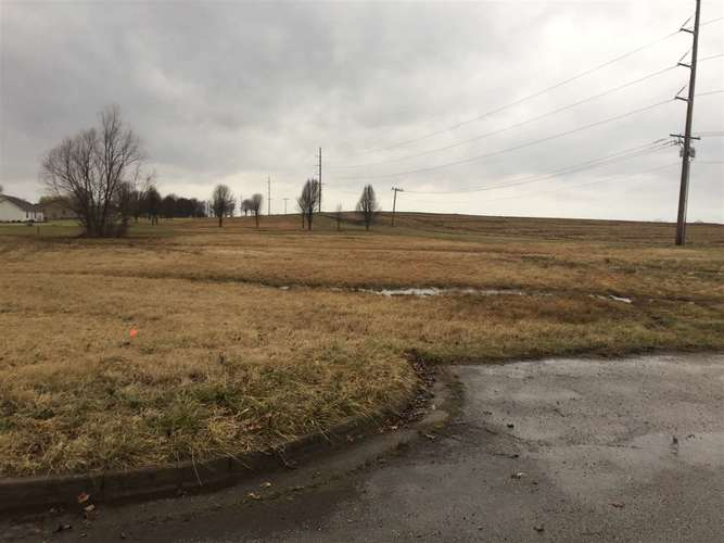 0 Melody Lots 469 and 470 Lane Mount Vernon, IN 47620 | MLS 201701911 | photo 2