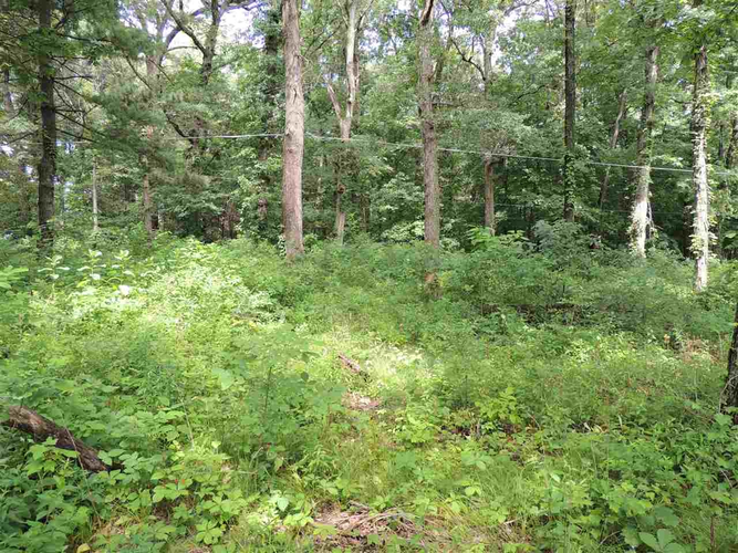 10000 N 1200W (Lake Lot 23) N Monticello, IN 47960 | MLS 201806238 | photo 2