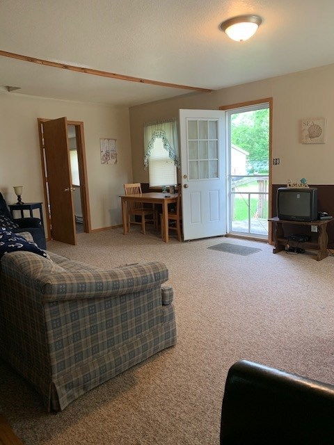 4568 W G Drive Albion IN 46701-9439   MLS 201926109   photo 3