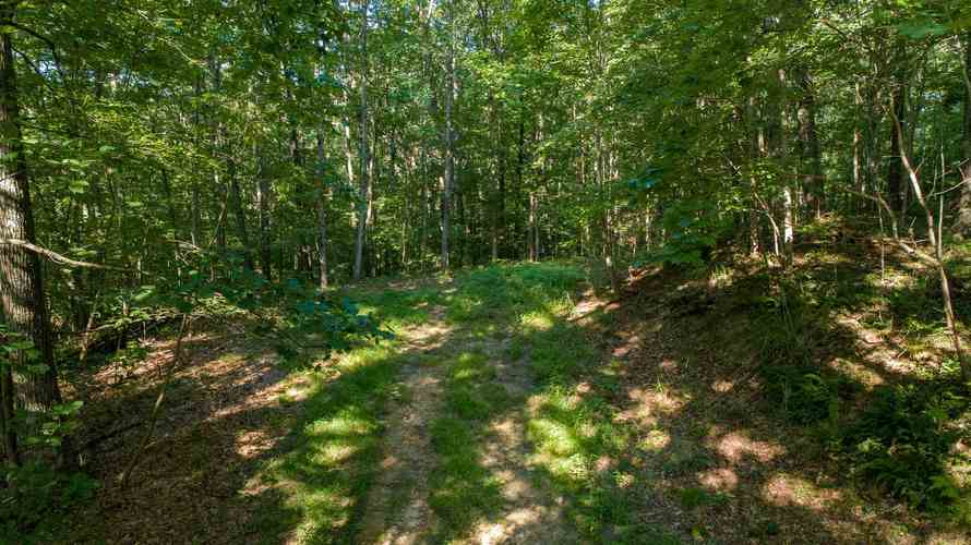 S State Road 446 S Bloomington, IN 47401   MLS 201935545   photo 1