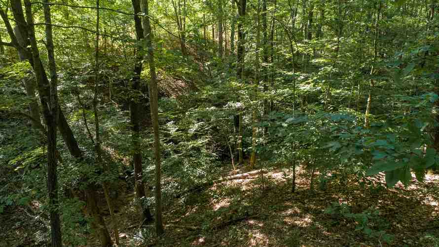 S State Road 446 S Bloomington, IN 47401   MLS 201935545   photo 11