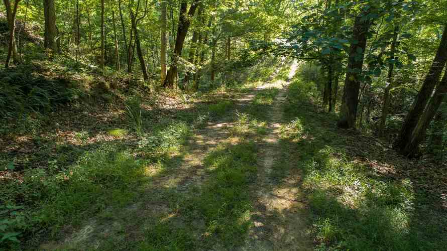S State Road 446 S Bloomington, IN 47401   MLS 201935545   photo 12