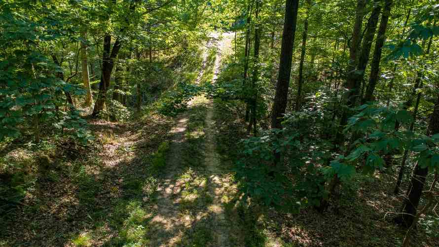 S State Road 446 S Bloomington, IN 47401   MLS 201935545   photo 13