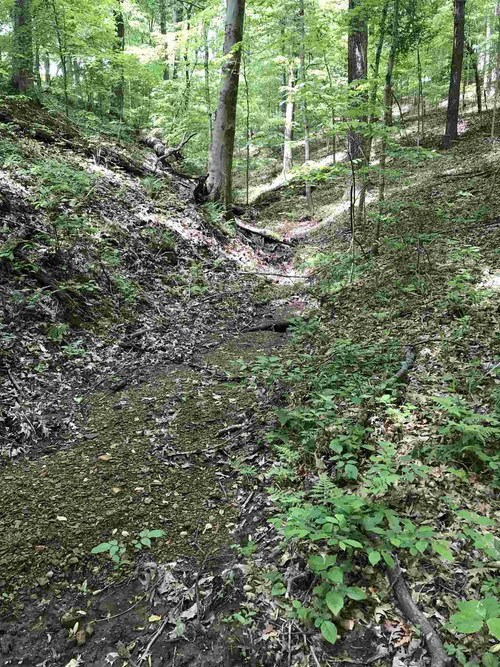 S State Road 446 S Bloomington, IN 47401   MLS 201935545   photo 16