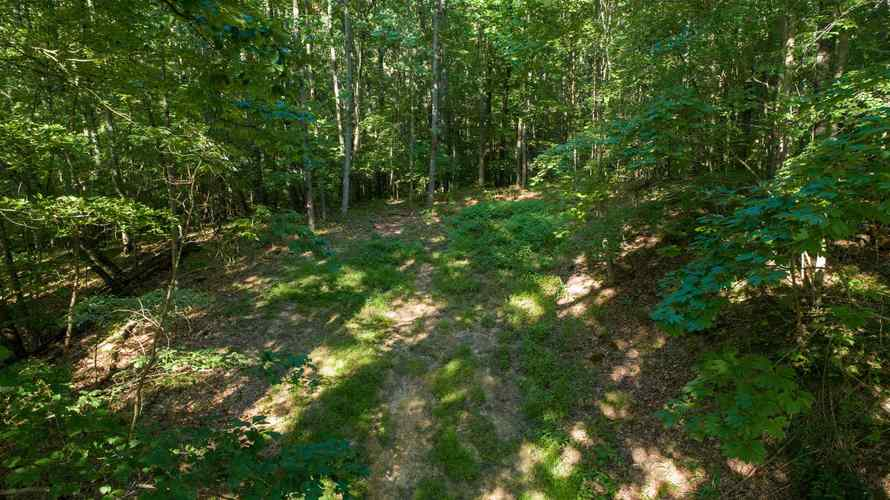 S State Road 446 S Bloomington, IN 47401   MLS 201935545   photo 2