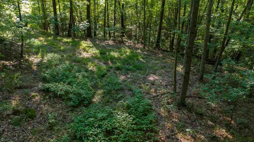S State Road 446 S Bloomington, IN 47401   MLS 201935545   photo 3