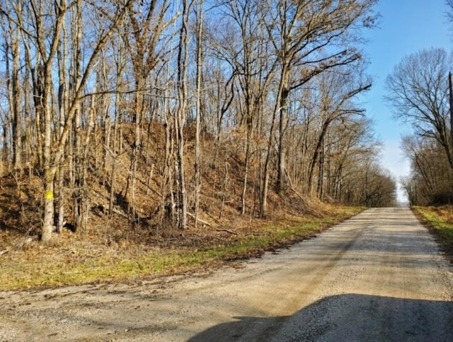 S CO RD 1200 Road Stendal IN 47585   MLS 201952318   photo 4