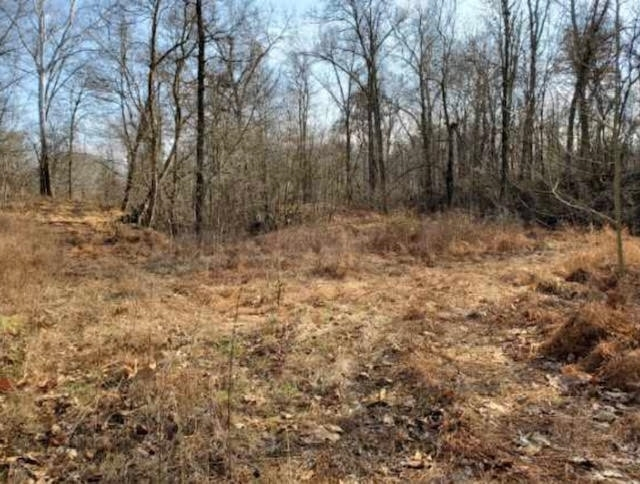S CO RD 1200 Road Stendal IN 47585   MLS 201952318   photo 6