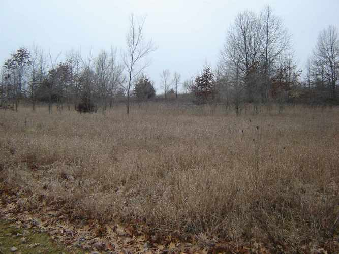 0 county road 950 E Fremont, IN 46737 | MLS 202001925 | photo 1