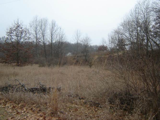0 county road 950 E Fremont, IN 46737 | MLS 202001925 | photo 2
