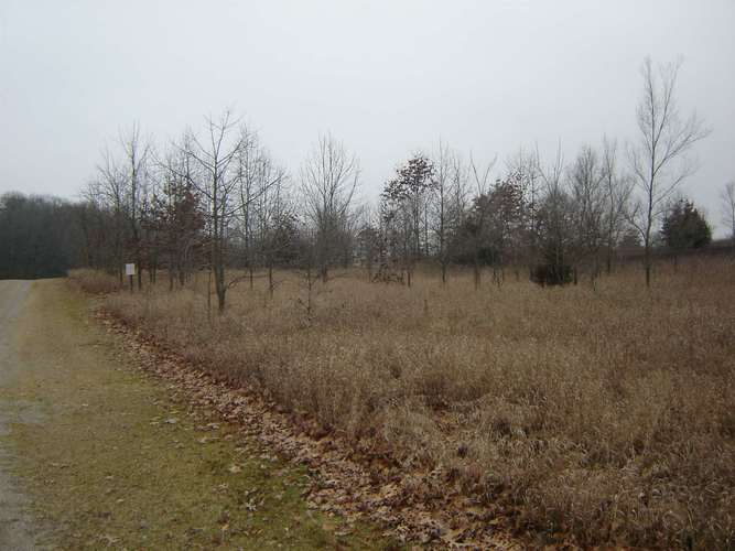 0 county road 950 E Fremont, IN 46737 | MLS 202001925 | photo 3