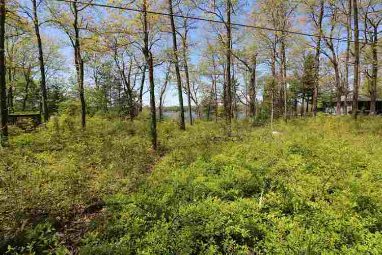 10000 N 1200 W Lake Lots 21 22 23 Monticello IN 47960 | MLS 202016495 | photo 4