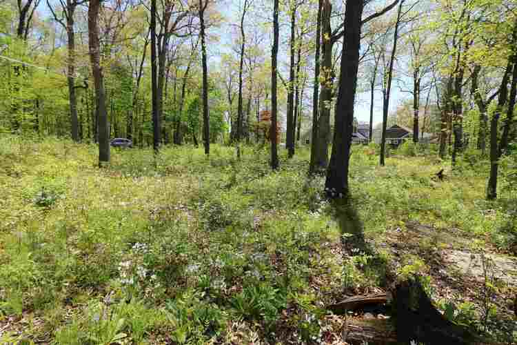 10000 N 1200 W Lake Lots 21 22 23 Monticello IN 47960 | MLS 202016495 | photo 7