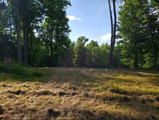 Lot 8 Land Bedford IN 47421 | MLS 202023997 | photo 2