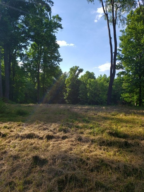 Lot 8 Land Bedford IN 47421 | MLS 202023997 | photo 3
