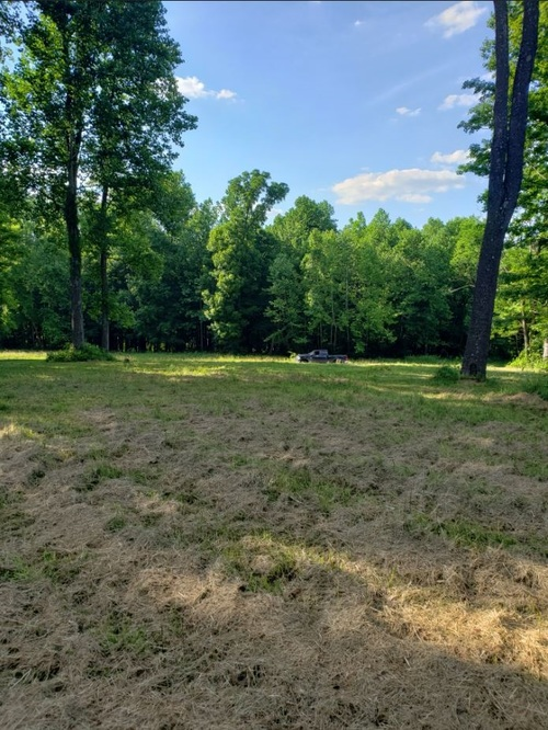 Lot 8 Land Bedford IN 47421 | MLS 202023997 | photo 4