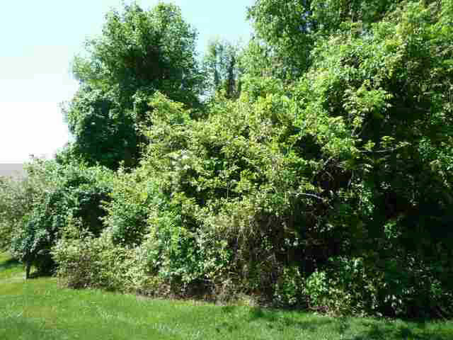 34 Lakewood #34 Vincennes, IN 47591   MLS 48287   photo 9