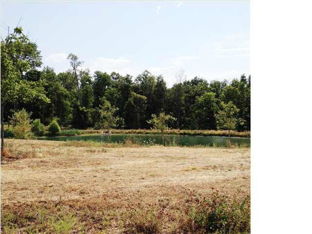 5791 SERENITY DR LOT 14 Mount Vernon IN 47620 | MLS 951216 | photo 5