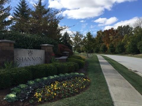 6390 MONTANA SPRINGS Drive Zionsville, IN 46077   MLS 21571161   photo 4