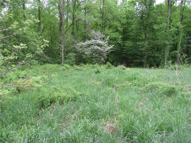 Lot 6 Mobley Drive Spencer, IN 47460 | MLS 21639011 | photo 1