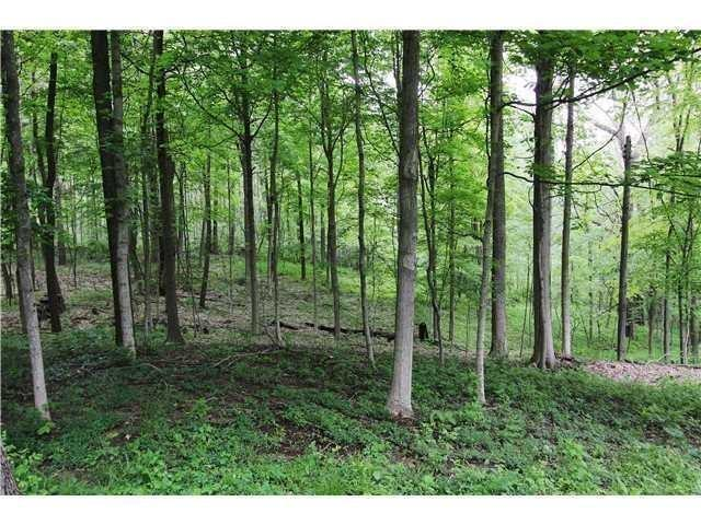 7300 N SARGENT Road Indianapolis, IN 46256 | MLS 21653460 | photo 29