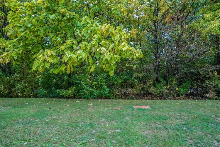 10658 Northern Dancer Drive Indianapolis, IN 46234 | MLS 21657849 | photo 4