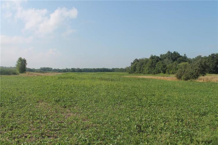 0 100 N Farmland, IN 47340 | MLS 21659359 | photo 3