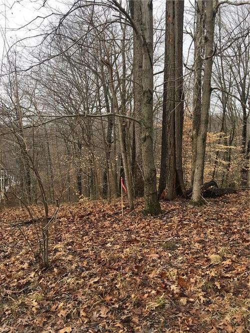 Lot 0 ANTELOPE Drive Nineveh IN 46164 | MLS 21693063 | photo 2