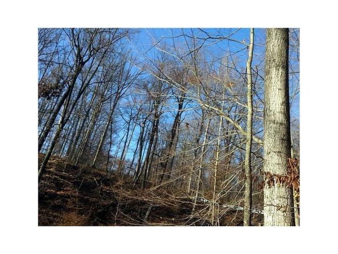 Lot 0 ANTELOPE Drive Nineveh IN 46164 | MLS 21693063 | photo 4
