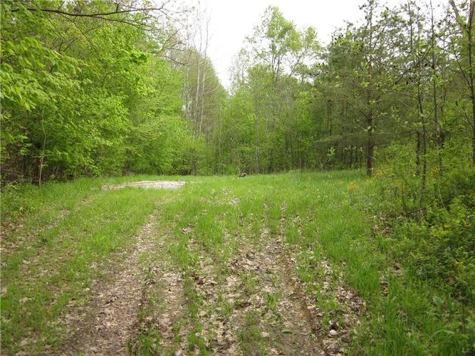 00 Straight Line Road Freedom IN 47431   MLS 21709533   photo 3