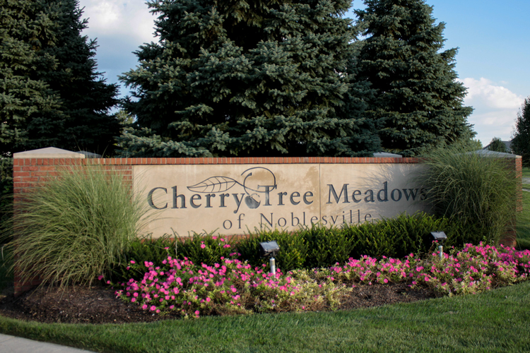 Cherry Tree Meadows Photo 9