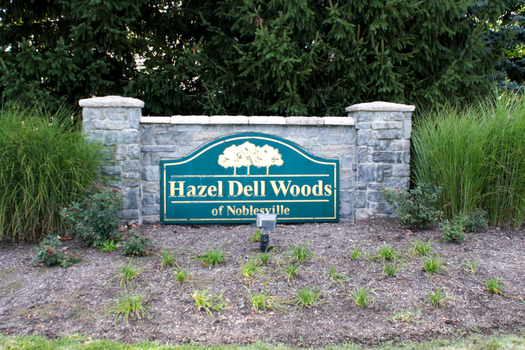 Hazel Dell Woods Photo 8
