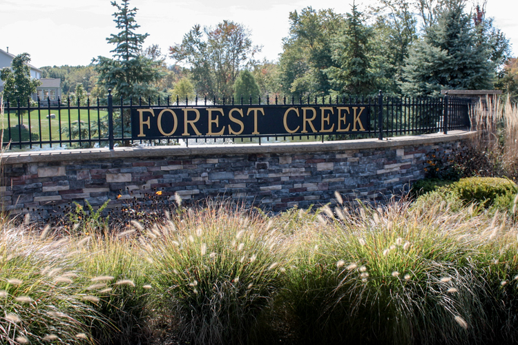 Forest Creek Photo 8