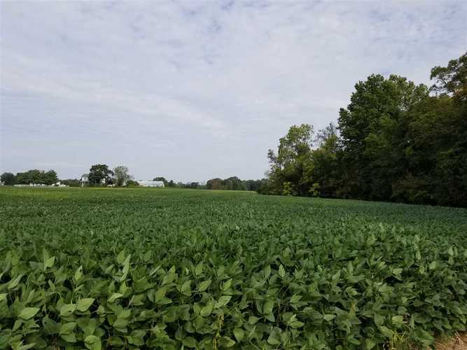 Lot 8 State Road 46 The Locks of Riley #The Locks of Riley Terre Haute, IN 47802 | MLS 90461 | photo 3